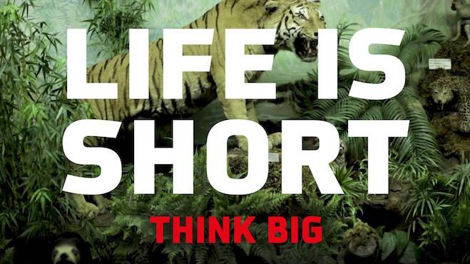 Start achtste editie filmfestival Go Short!